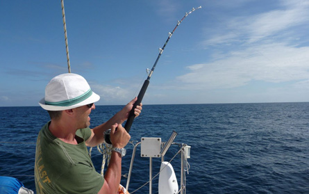 Fish-fishing-belize