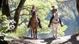 Belize-Horseriding-jungle-riding