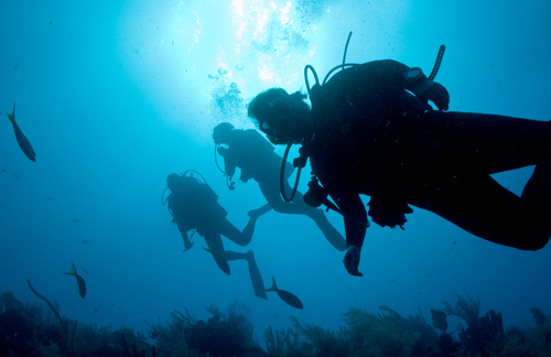 belize-Diving-the-Reef