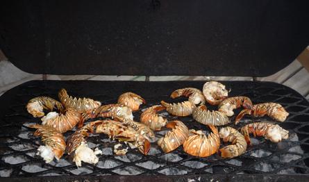 Lobster-Lovers-Tailor-Made-Belize