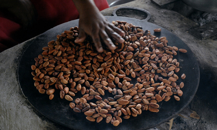 Cacao Crazy, Tailor Made by Absolute Belize