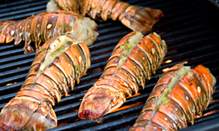 Lobster-Lovers-Tailor-Made-Belize