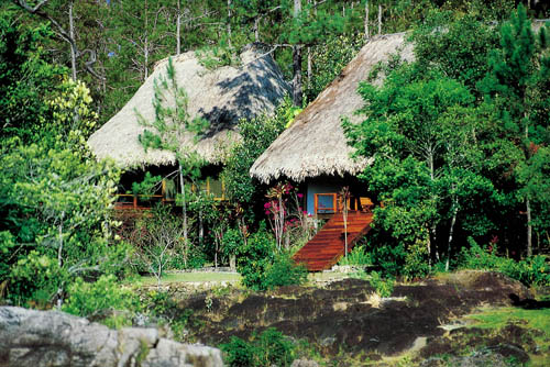 cayo-district-Blancaneaux-resort-jungle