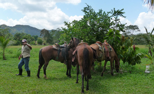 southern-belize-horseriding