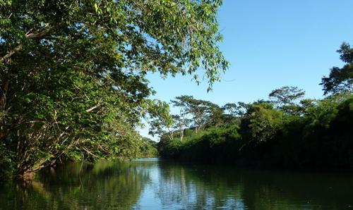 southern-belize-jungle-resort
