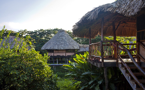 Southern-belize-Cotton-Tree-Lodge-resort-jungle