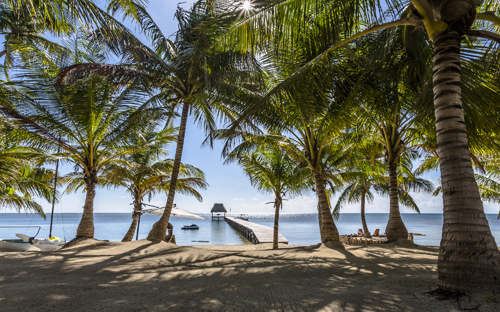 El Secreto Belize, Absolute Belize