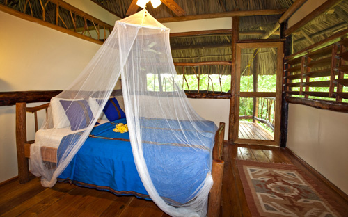 Cotton Tree Lodge, Absolute Belize
