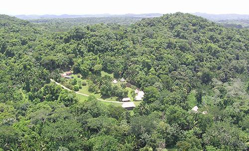 cayo-district-pooks-hill-jungle