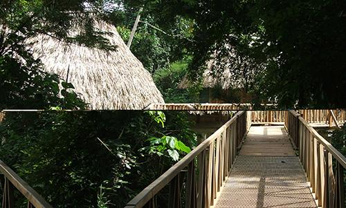 cayo-district-pooks-hill-cabanas-Bird-Walk-Cabanas