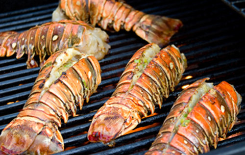 lobster_grill_absolute_belize_thanks_giving_vacation_belize